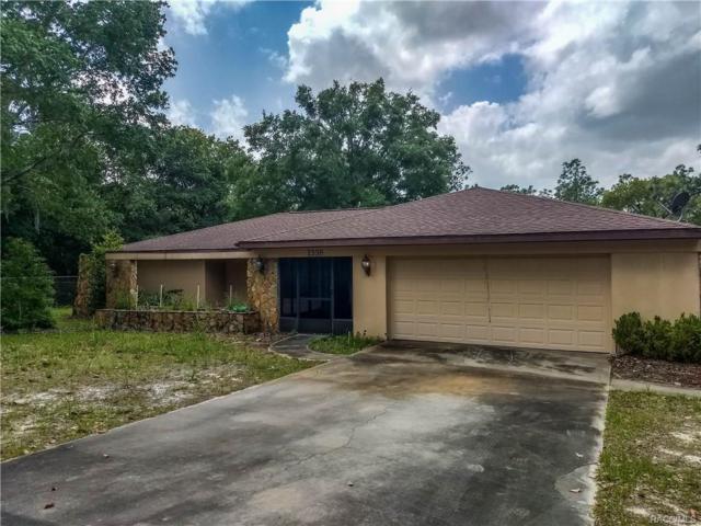 1338 N Lombardo Avenue, Lecanto, FL 34461 (MLS #772078) :: Plantation Realty Inc.