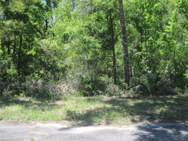 7764 W Francine Lane, Crystal River, FL 34429 (MLS #772085) :: Plantation Realty Inc.