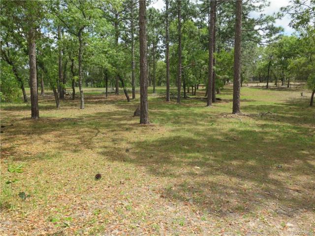 7225 N Caesar Point, Dunnellon, FL 34433 (MLS #772090) :: Plantation Realty Inc.