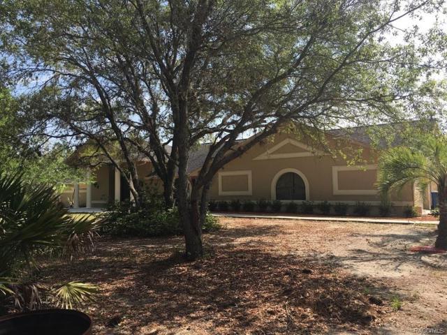 3685 N Palomino Drive, Beverly Hills, FL 34465 (MLS #772103) :: Plantation Realty Inc.