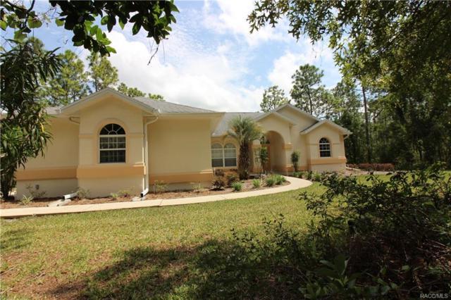 4058 N Hatchet Circle, Beverly Hills, FL 34465 (MLS #772113) :: Plantation Realty Inc.