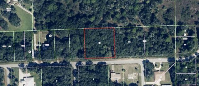 11109 W Gem Street, Crystal River, FL 34428 (MLS #772115) :: Plantation Realty Inc.