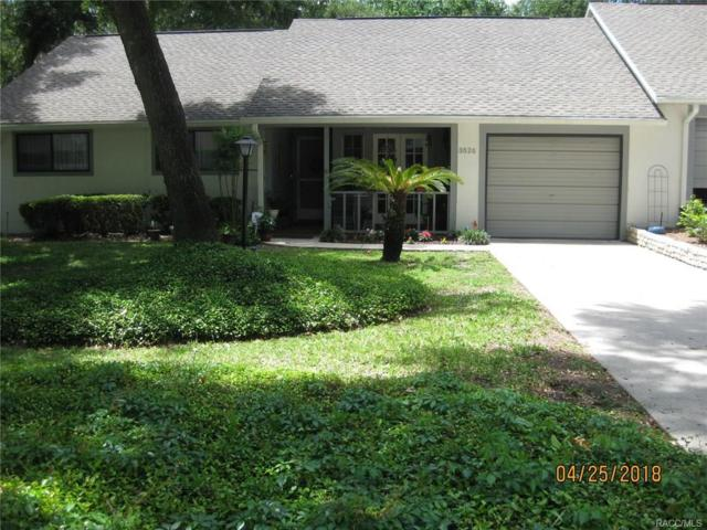 3826 N Briarberry Point, Beverly Hills, FL 34465 (MLS #772198) :: Plantation Realty Inc.