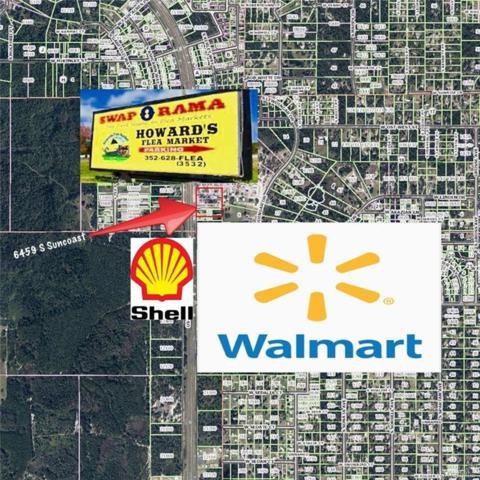 6459 S Suncoast Boulevard, Homosassa, FL 34446 (MLS #772216) :: Plantation Realty Inc.
