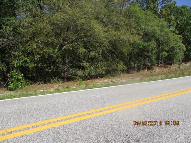3531 N Annapolis Avenue, Hernando, FL 34442 (MLS #772231) :: Plantation Realty Inc.