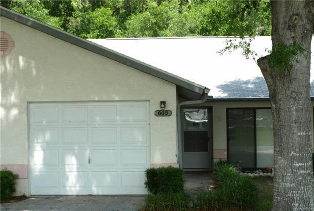 603 Whispering Pines Boulevard, Inverness, FL 34453 (MLS #772233) :: Plantation Realty Inc.