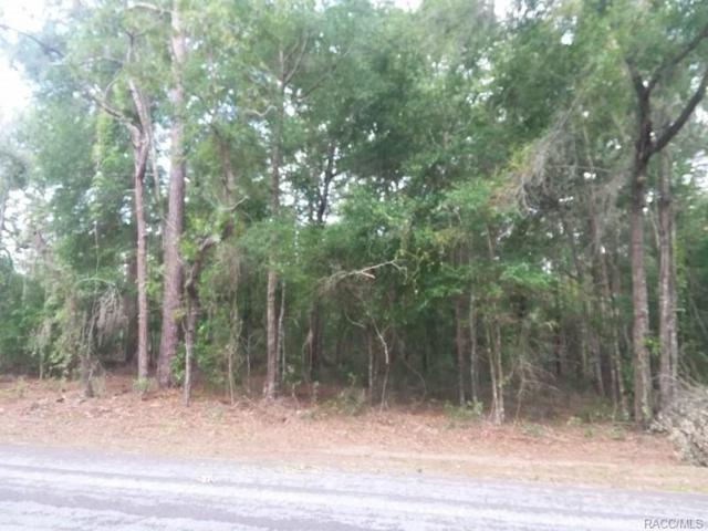 12180 S Elm Point, Floral City, FL 34436 (MLS #772248) :: Plantation Realty Inc.
