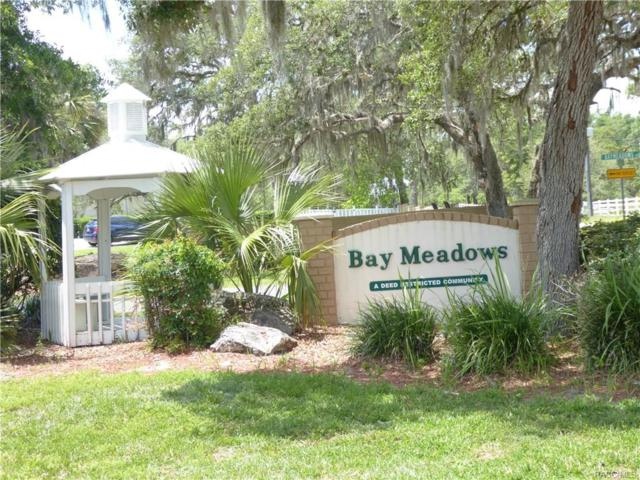 9842 E Lindale Court, Inverness, FL 34450 (MLS #772287) :: Plantation Realty Inc.