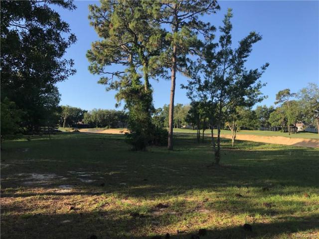 3170 N Pinelake Village Point, Lecanto, FL 34461 (MLS #772331) :: Plantation Realty Inc.