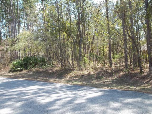 3792 S Reflection Avenue, Inverness, FL 34450 (MLS #772342) :: Plantation Realty Inc.
