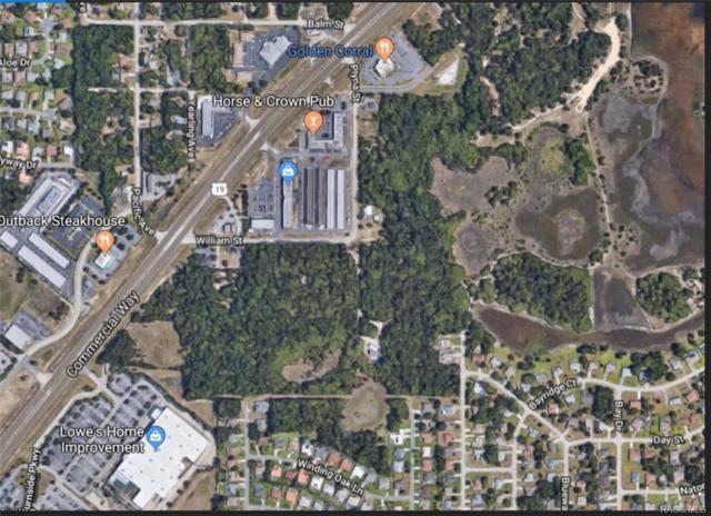4468 Plyna Street, Spring Hill, FL 34606 (MLS #772384) :: Plantation Realty Inc.