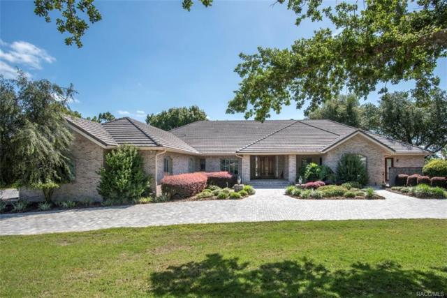 3968 N Grayhawk Loop, Lecanto, FL 34461 (MLS #773453) :: Plantation Realty Inc.