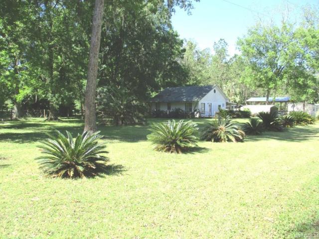 2670 SE 68th Street, Inglis, FL 34449 (MLS #773746) :: Plantation Realty Inc.
