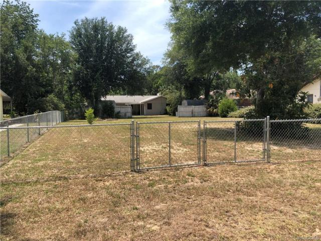 1132 N Lajolla Point, Crystal River, FL 34429 (MLS #773840) :: Plantation Realty Inc.