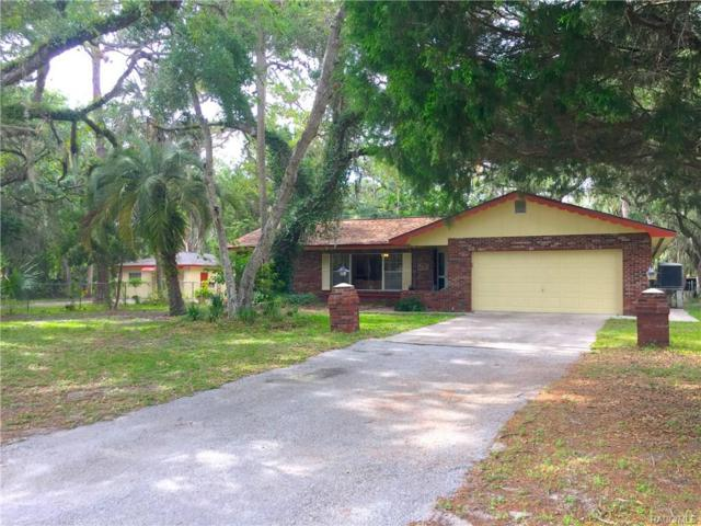 6704 Riverside Drive, Yankeetown, FL 34498 (MLS #773849) :: Plantation Realty Inc.