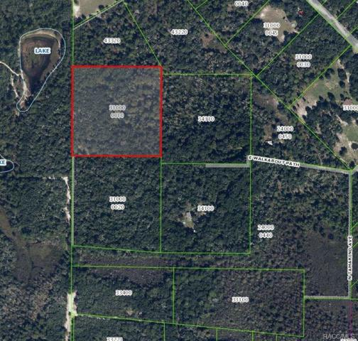 7111 N Tamarind Avenue, Hernando, FL 34442 (MLS #773920) :: Plantation Realty Inc.