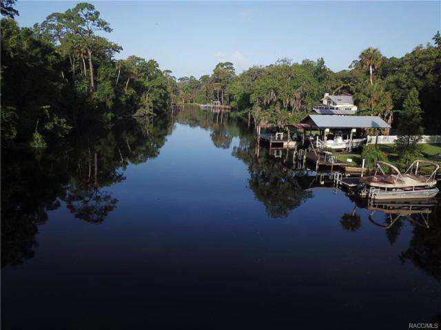 6111 Riverside Drive, Yankeetown, FL 34498 (MLS #773935) :: Plantation Realty Inc.