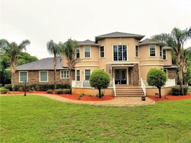 610 W Britain Street, Hernando, FL 34442 (MLS #774056) :: Plantation Realty Inc.