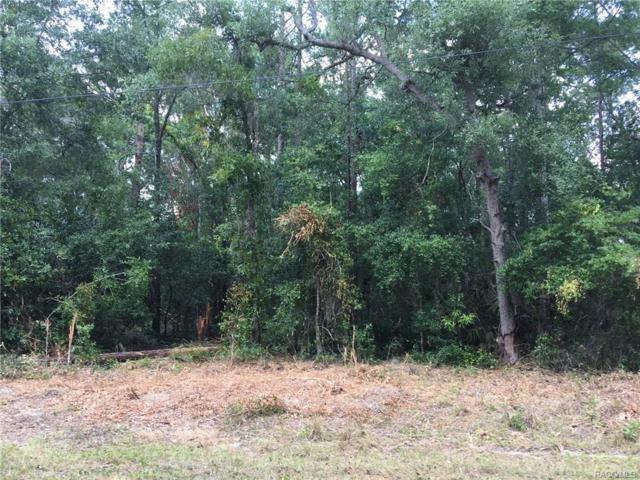 9752 W Gardeners Lane, Crystal River, FL 34428 (MLS #774117) :: Plantation Realty Inc.