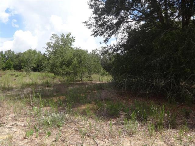 2508 Adams Street, Inverness, FL 34453 (MLS #774161) :: Plantation Realty Inc.