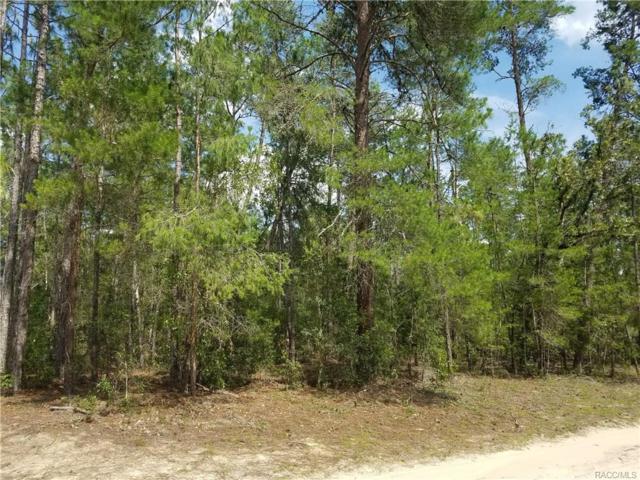 12069 S Vina Maria Point, Floral City, FL 34436 (MLS #774193) :: Plantation Realty Inc.