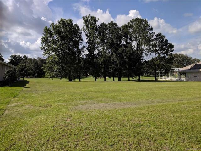 307 W Redsox Path, Hernando, FL 34442 (MLS #774197) :: Plantation Realty Inc.