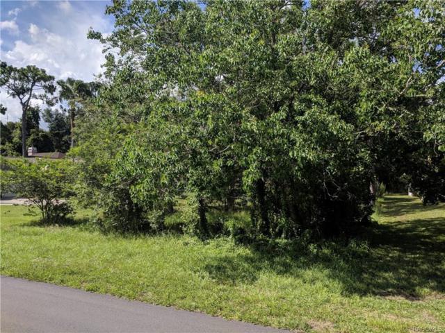 1929 W Marsten Court, Lecanto, FL 34461 (MLS #774198) :: Plantation Realty Inc.