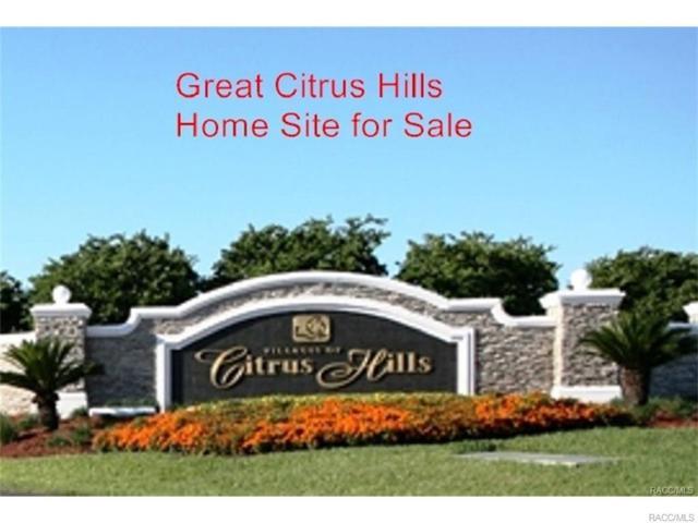 3999 N Eisenhower Avenue, Hernando, FL 34442 (MLS #774200) :: Plantation Realty Inc.