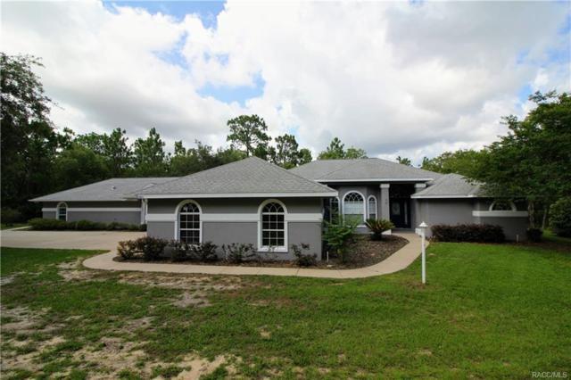 3001 N Sheriff Drive, Beverly Hills, FL 34465 (MLS #774293) :: Plantation Realty Inc.