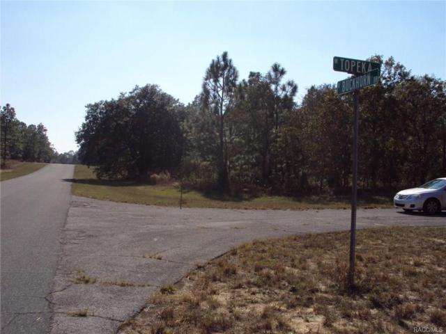 3300 N Buckhorn Drive, Beverly Hills, FL 34465 (MLS #774328) :: Plantation Realty Inc.