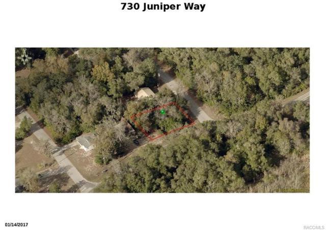 730 S Juniper Way, Inverness, FL 34450 (MLS #774387) :: Plantation Realty Inc.