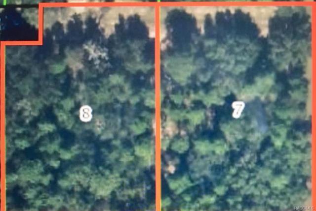 12 S School Avenue, Lecanto, FL 34461 (MLS #774395) :: Plantation Realty Inc.
