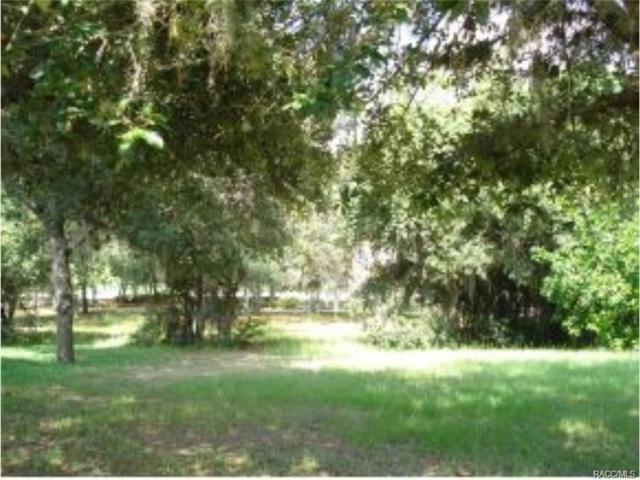1914 N Gibson Point, Hernando, FL 34442 (MLS #774410) :: Plantation Realty Inc.