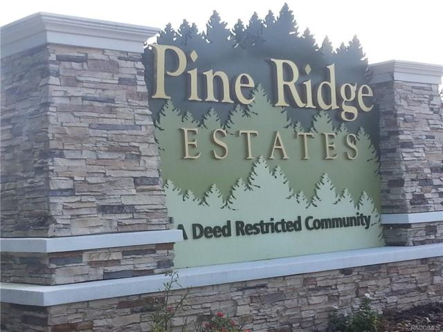 4006 N Caledonia Drive, Beverly Hills, FL 34465 (MLS #774426) :: Plantation Realty Inc.
