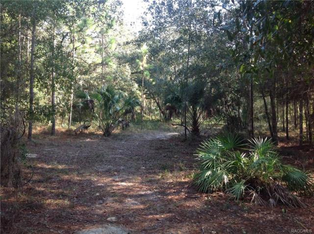 0 SE 110 Avenue, Inglis, FL 34449 (MLS #774446) :: Plantation Realty Inc.