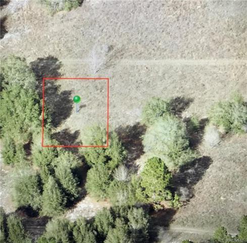 2401 Jackson Street, Inverness, FL 34453 (MLS #774464) :: Plantation Realty Inc.