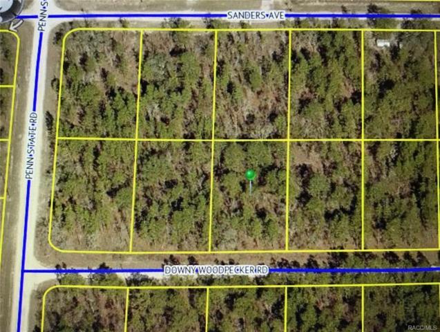 0 Downy Woodpecker Road, Weeki Wachee, FL 34606 (MLS #774466) :: Plantation Realty Inc.