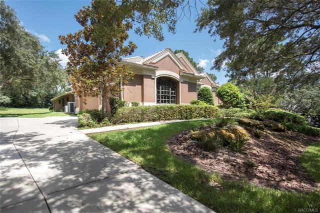 4455 N Pine Valley Loop, Lecanto, FL 34461 (MLS #774471) :: Plantation Realty Inc.