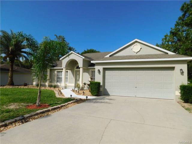 1362 W Hampshire Boulevard, Citrus Springs, FL 34434 (MLS #774472) :: Plantation Realty Inc.