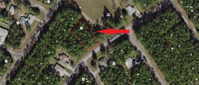 10286 N Gardner Way, Citrus Springs, FL 34434 (MLS #774480) :: Plantation Realty Inc.