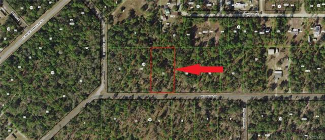 10253 W Donegal Lane, Crystal River, FL 34428 (MLS #774481) :: Plantation Realty Inc.