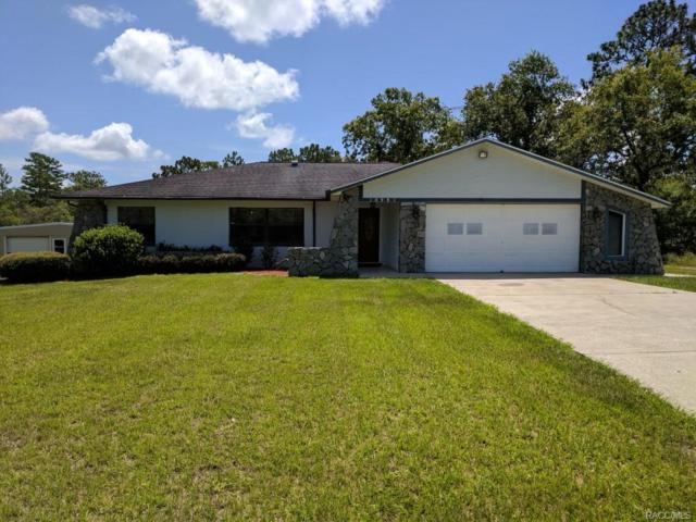 10981 N G Martinelli Boulevard, Citrus Springs, FL 34433 (MLS #774489) :: Plantation Realty Inc.