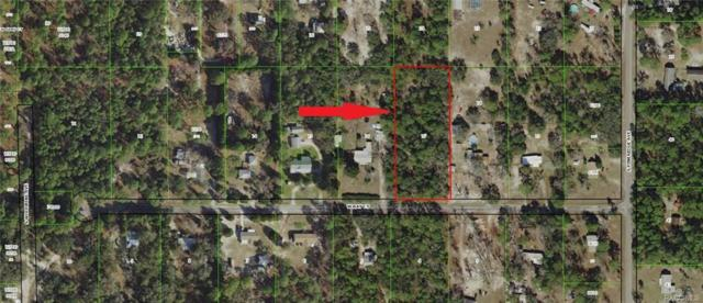 6697 W Ray Court, Homosassa, FL 34448 (MLS #774491) :: Plantation Realty Inc.