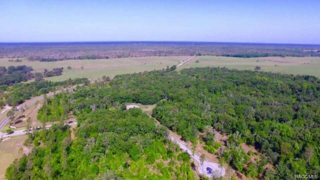 1710 W Oak Valley Court, Homosassa, FL 34446 (MLS #774492) :: Plantation Realty Inc.