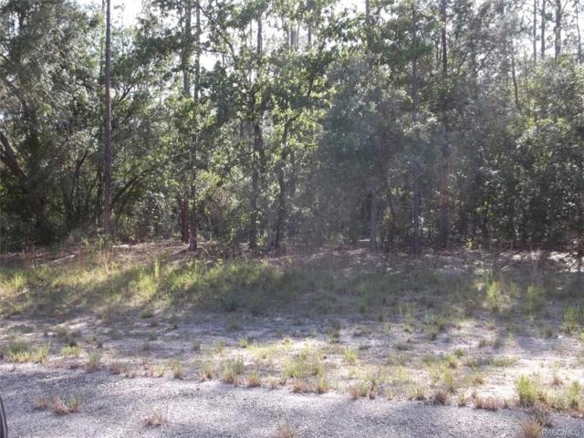 8594 N Bambury Terrace, Citrus Springs, FL 34434 (MLS #774494) :: Plantation Realty Inc.