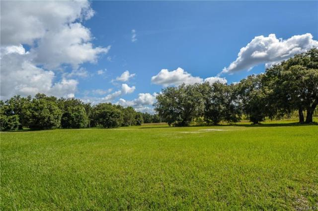 9023 E Sweetwater Drive, Inverness, FL 34450 (MLS #774495) :: Plantation Realty Inc.
