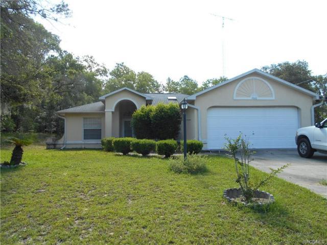7022 N Maltese Drive, Citrus Springs, FL 34433 (MLS #774496) :: Plantation Realty Inc.