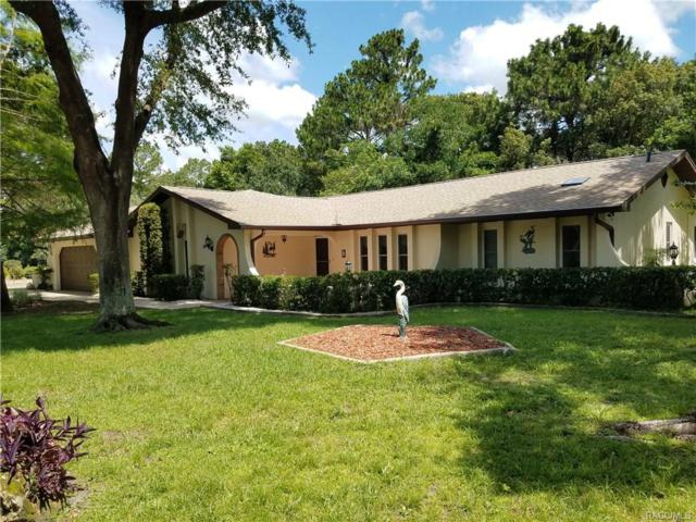 94 Pine Street, Homosassa, FL 34446 (MLS #774507) :: Plantation Realty Inc.