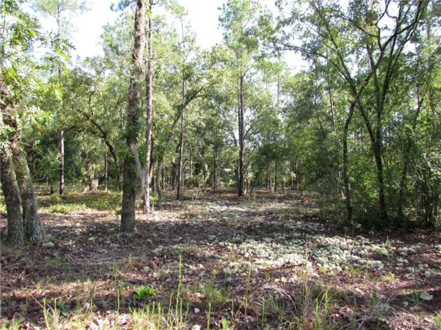 00 SW 82 Loop, Dunnellon, FL 34431 (MLS #774518) :: Plantation Realty Inc.
