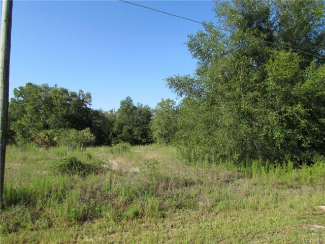 00 SW North Beach Road, Dunnellon, FL 34431 (MLS #774522) :: Plantation Realty Inc.